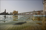 Sri Harmandir Sahib Ji (Golden Temple)